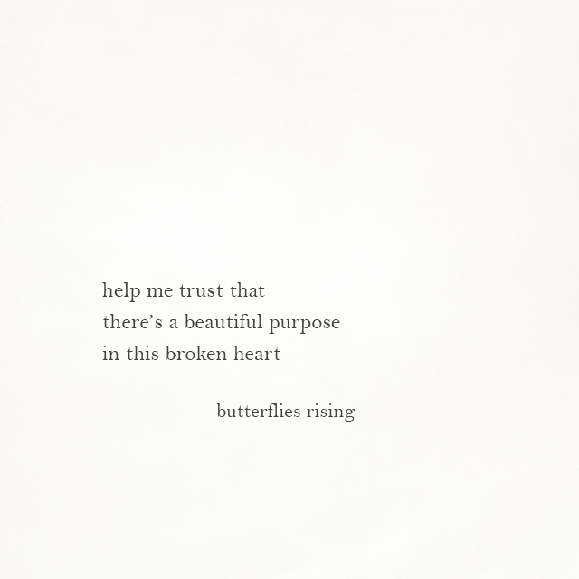 a beautiful purpose in this broken heart