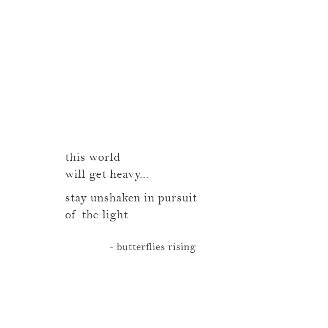 stay unshaken in pursuit of the light