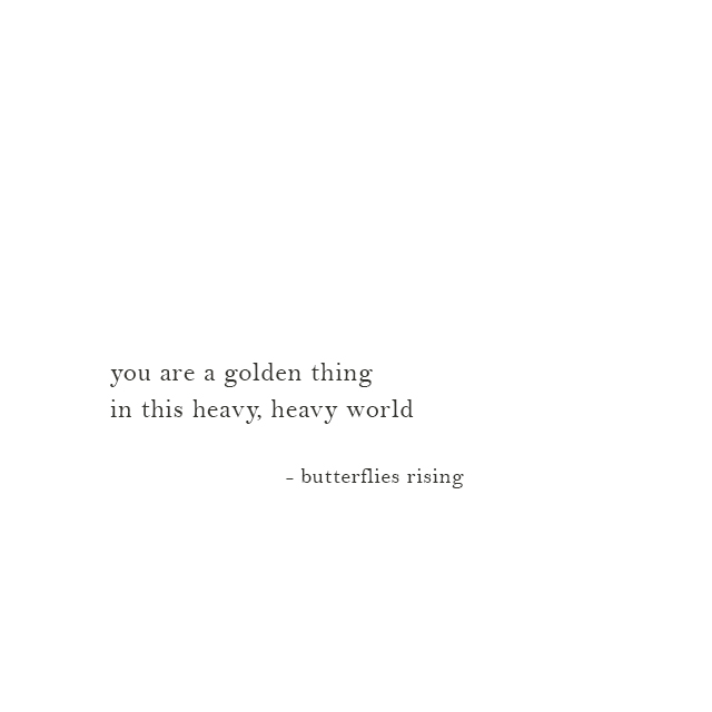 you are a golden thing in this heavy, heavy world - butterflies rising