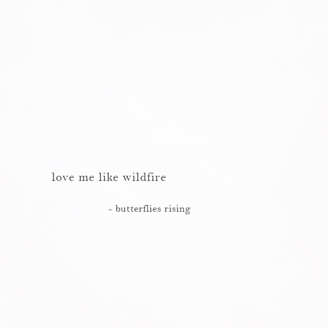 love me like wildfire - butterflies rising