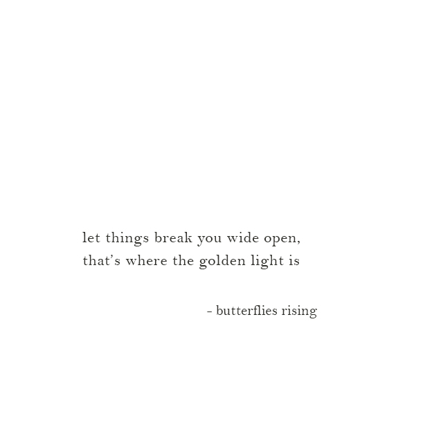 let things break you wide open, that's where the golden light is - butterflies rising