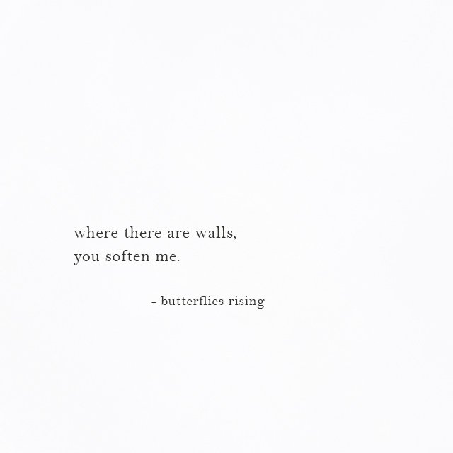 where there are walls, you soften me. - butterflies rising