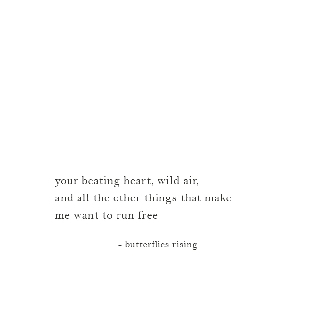 your beating heart, wild air, and all the other things that make me want to run free - butterflies rising