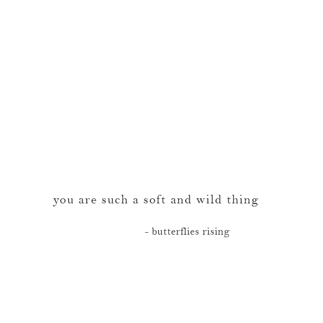 you are such a soft and wild thing - butterflies rising