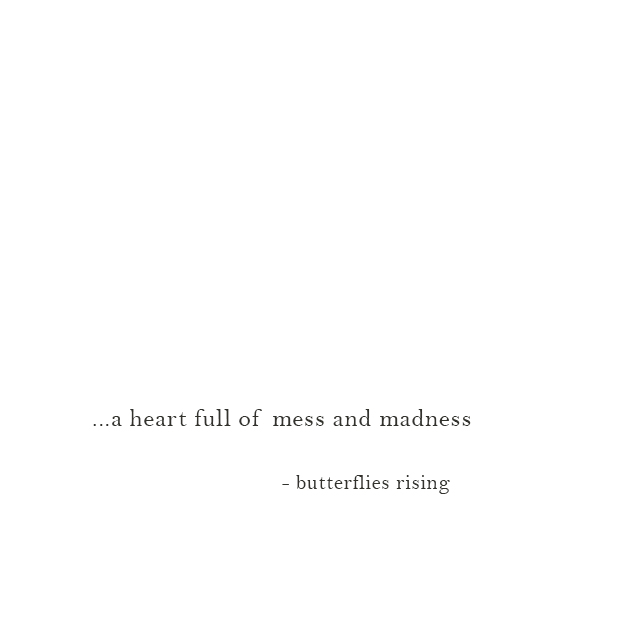 ...a heart full of mess and madness - butterflies rising