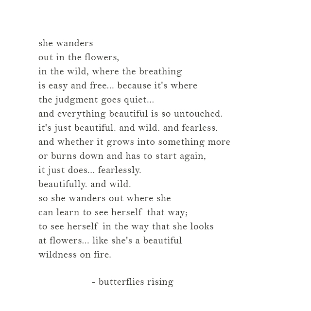 like she's a beautiful wildness on fire - butterflies rising