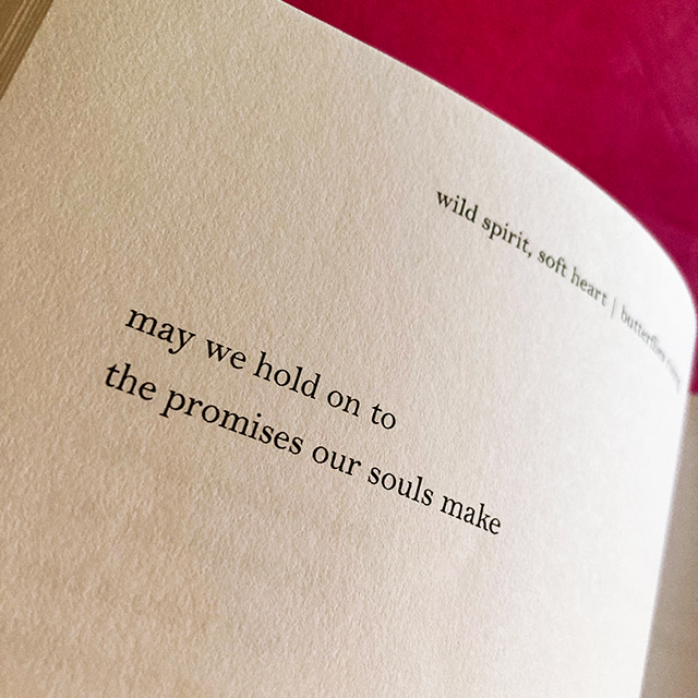 may we hold on to the promises our souls make - butterflies rising