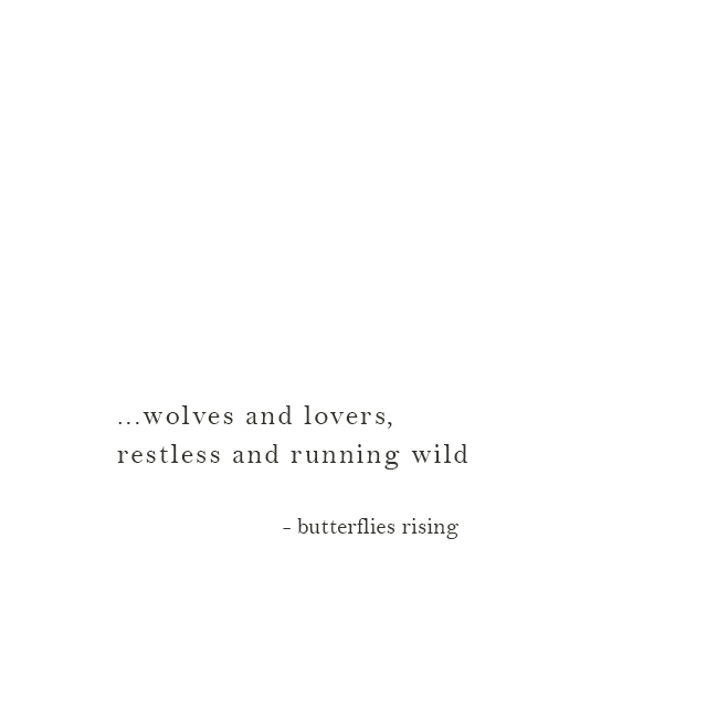 ...wolves and lovers, restless and running wild - butterflies rising