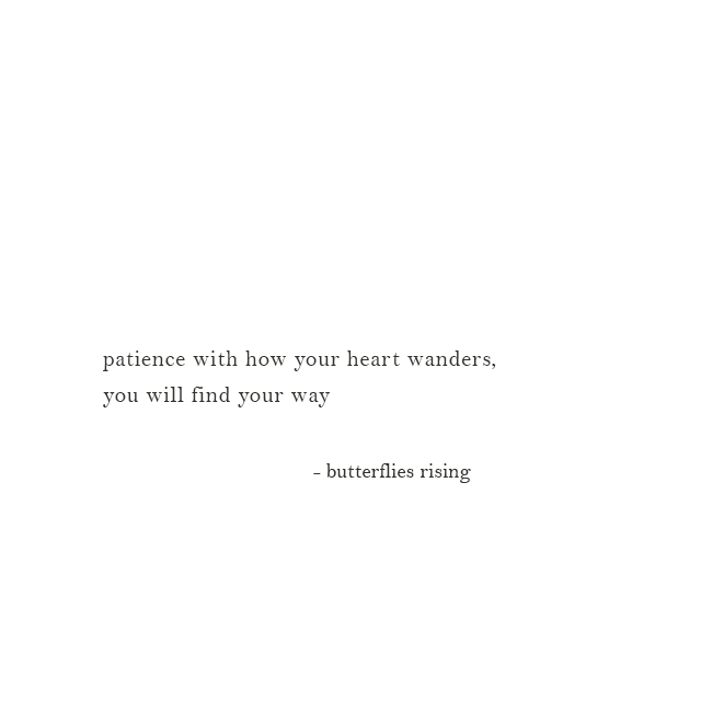 patience with how your heart wanders, you will find your way - butterflies rising