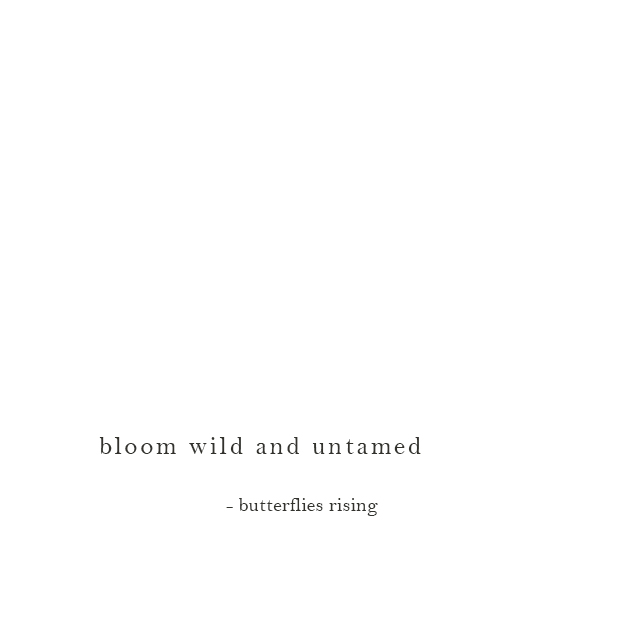 bloom wild and untamed - butterflies rising