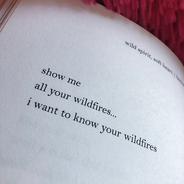 show me all your wildfires... i want to know your wildfires