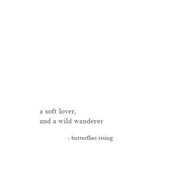 a soft lover, and a wild wanderer - butterflies rising