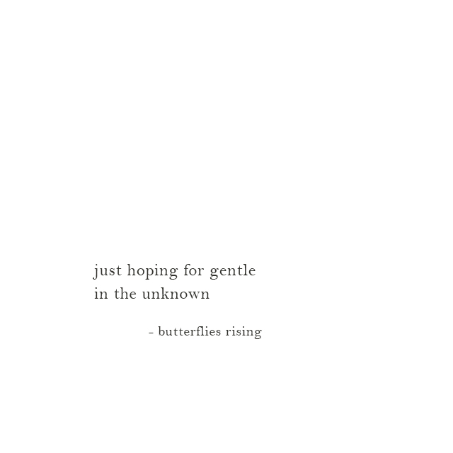just hoping for gentle in the unknown - butterflies rising