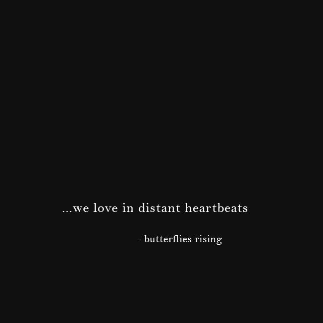 ...we love in distant heartbeats - butterflies rising