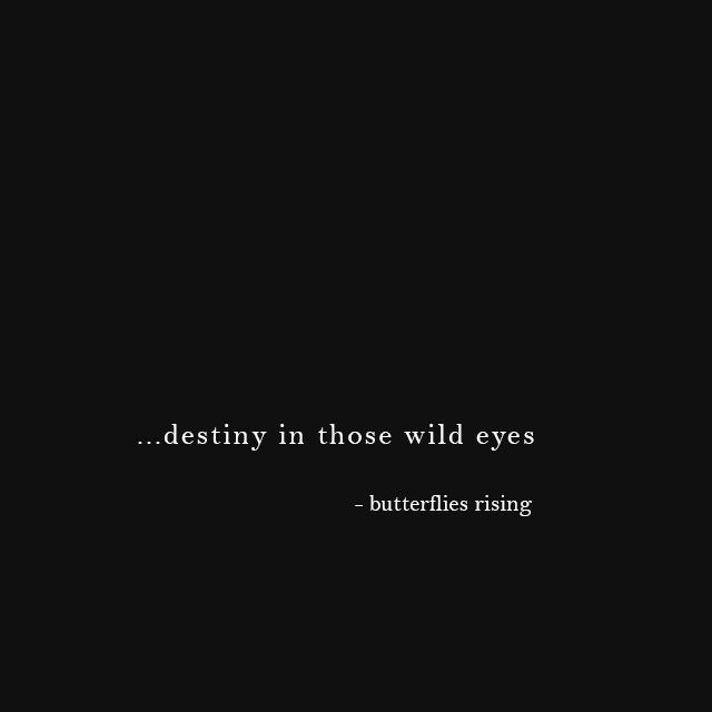 destiny in those wild eyes - butterflies rising