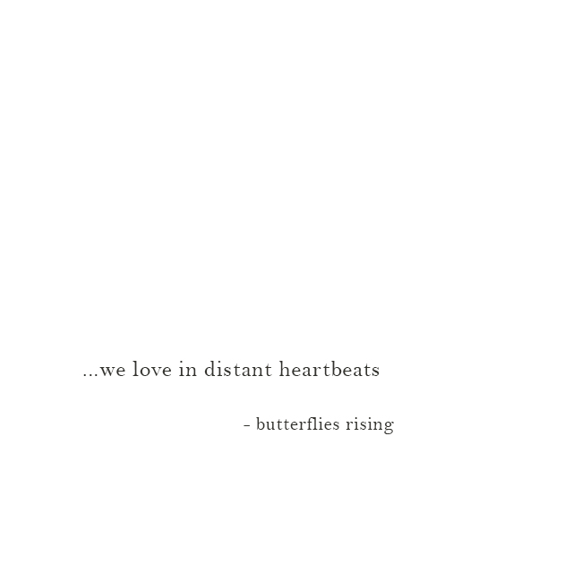 we love in distant heartbeats - butterflies rising