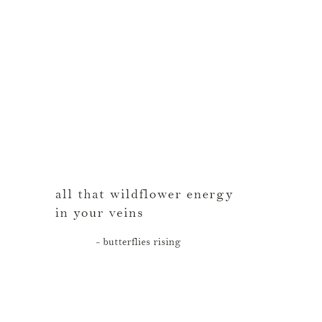 all that wildflower energy in your veins - butterflies rising